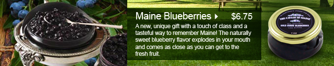 Main Blueberries