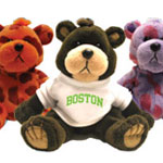 Bear with Boston T Shirt